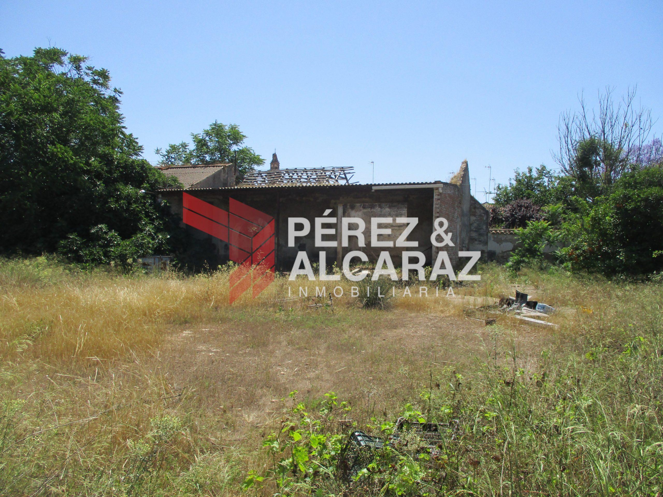 Solar en Camino Huertas Sta María. Palma del Río